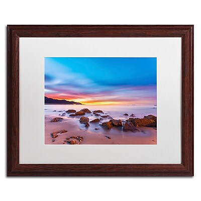 Trademark Fine Art Chris Moyer 'Mussel Shoals Morning' 16 x 20 (ALI0764-W1620MF)