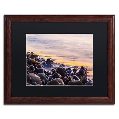 Trademark Fine Art Chris Moyer 'Wet Rock Reflections' 16 x 20 (886511731714)