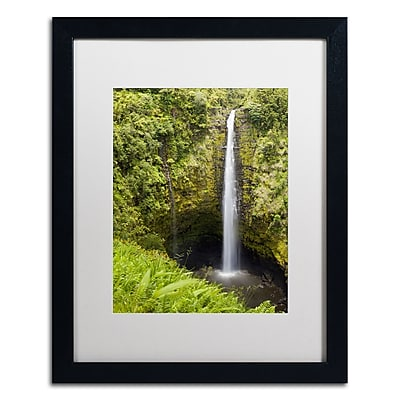 Trademark Fine Art Chris Moyer 'Akaka Falls' 16 x 20 (ALI0769-B1620MF)