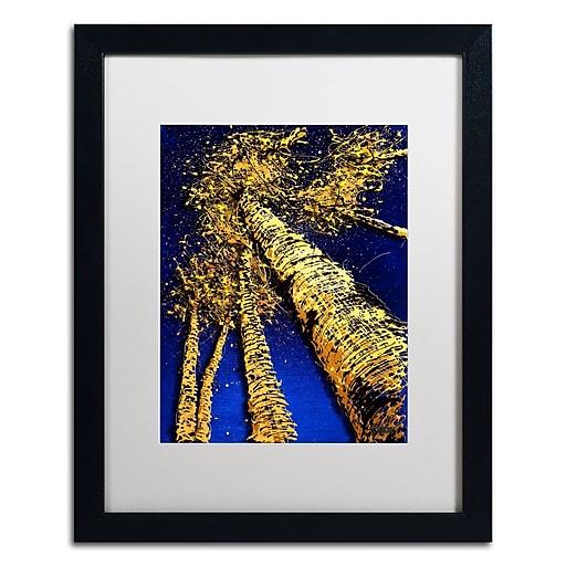 Trademark Fine Art Roderick Stevens 'Aspen Sky 2'  16 x 20 (RS999-B1620MF)