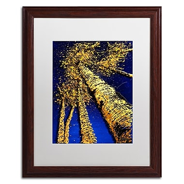 Trademark Fine Art Roderick Stevens 'Aspen Sky 2' 16 x 20 (RS999-W1620MF)
