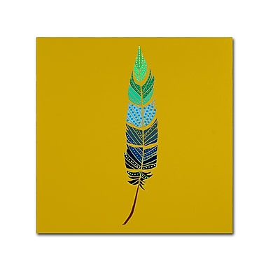 Trademark Fine Art Sylvie Demers 'Plume 2' 14 x 14 (ALI0914-C1414GG)