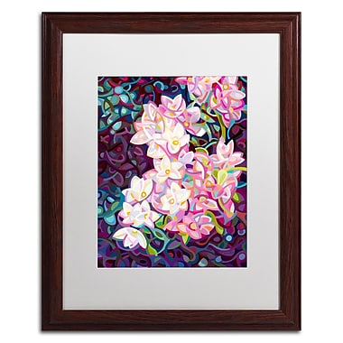 Trademark Fine Art Mandy Budan 'Cascade' 16 x 20 (ALI0917-W1620MF)