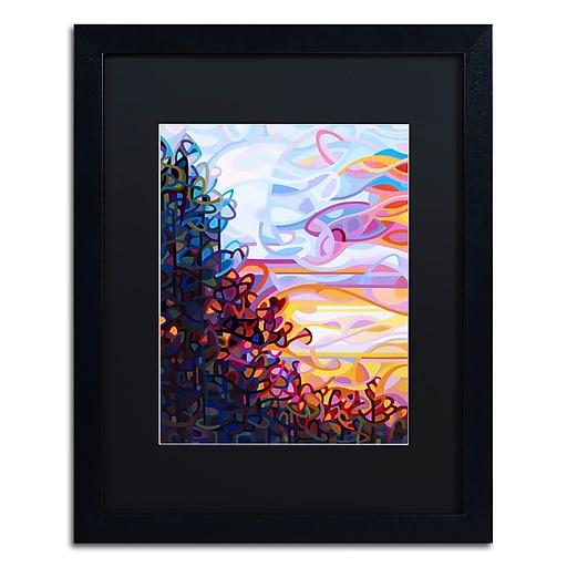 Trademark Fine Art Mandy Budan 'Crescendo'  16 x 20 (886511753587)