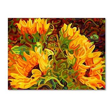 Trademark Fine Art Mandy Budan 'Four Sunflowers' 14 x 19 (ALI0919-C1419GG)
