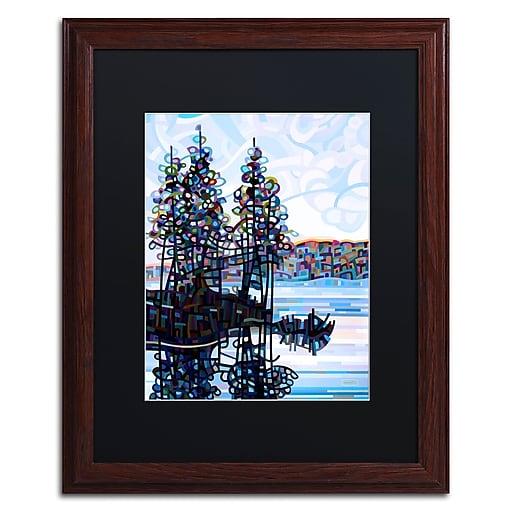 Trademark Fine Art Mandy Budan 'Haliburton Morning'  16 x 20 (886511753853)