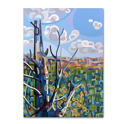 Trademark Fine Art Mandy Budan 'Hockley Valley' 24 x 32 (ALI0922-C2432GG)