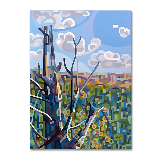 Trademark Fine Art Mandy Budan 'Hockley Valley'  35 x 47 (ALI0922-C3547GG)