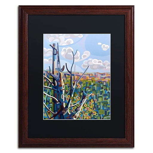 Trademark Fine Art Mandy Budan 'Hockley Valley'  16 x 20 (886511753990)