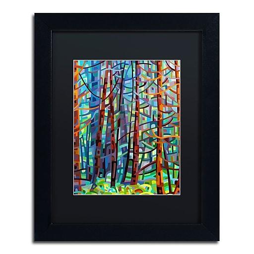 Trademark Fine Art Mandy Budan 'In A Pine Forest'  11 x 14 (886511754003)