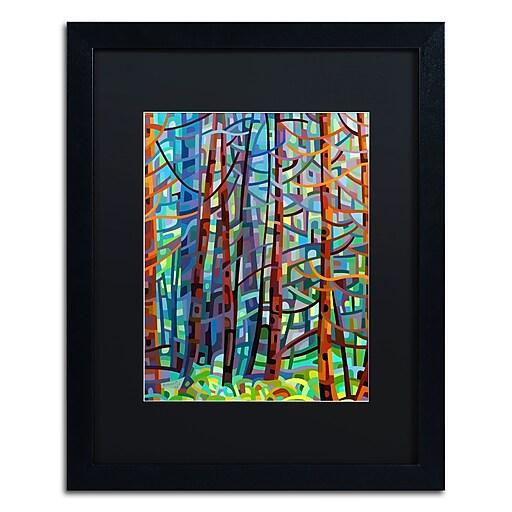 Trademark Fine Art Mandy Budan 'In A Pine Forest'  16 x 20 (886511754027)