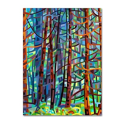 Trademark Fine Art Mandy Budan 'In A Pine Forest' 35 x 47 (ALI0923-C3547GG)