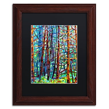 Trademark Fine Art Mandy Budan 'In A Pine Forest' 11 x 14 (886511754089)