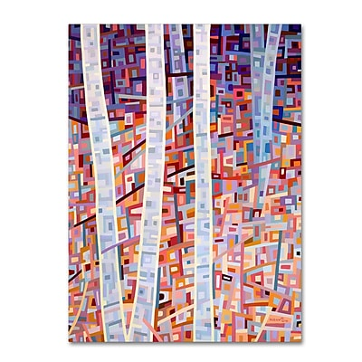 Trademark Fine Art Mandy Budan 'Incandescence' 14 x 19 (ALI0924-C1419GG)