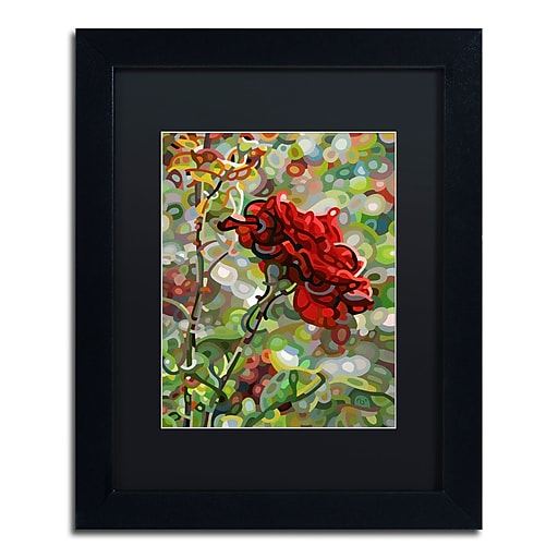 Trademark Fine Art Mandy Budan 'Last Rose Of Summer'  11 x 14 (886511754249)
