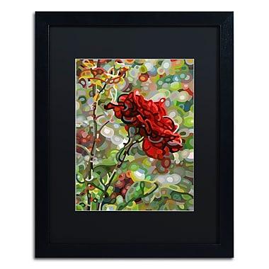 Trademark Fine Art Mandy Budan 'Last Rose Of Summer' 16 x 20 (886511754263)
