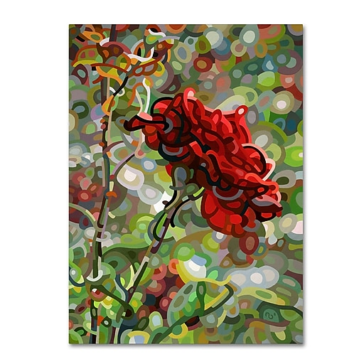 Trademark Fine Art Mandy Budan 'Last Rose Of Summer'  35 x 47 (ALI0926-C3547GG)