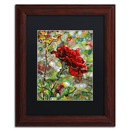Trademark Fine Art Mandy Budan 'Last Rose Of Summer'  11 x 14 (886511754324)