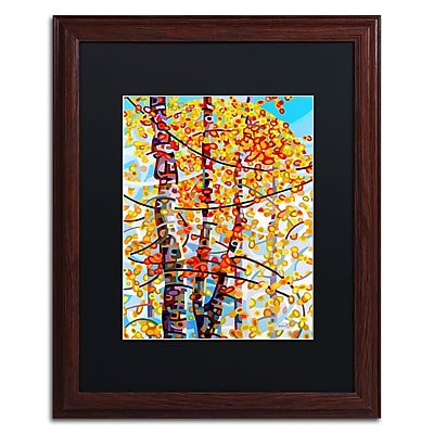 Trademark Fine Art Mandy Budan 'Panoply' 16 x 20 (886511754430)