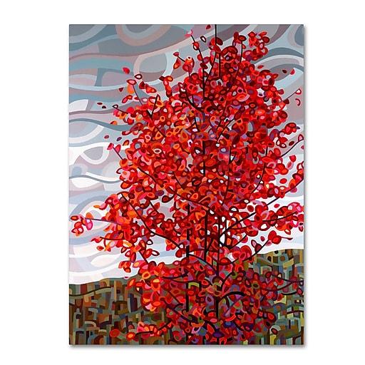 Trademark Fine Art Mandy Budan 'Passing Storm'  14 x 19 (ALI0928-C1419GG)