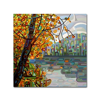 Trademark Fine Art Mandy Budan 'Reflections' 14 x 14 (ALI0930-C1414GG)