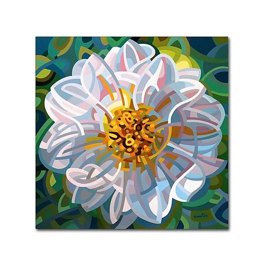 Trademark Fine Art Mandy Budan 'Solitaire'  35 x 35 (ALI0932-C3535GG)