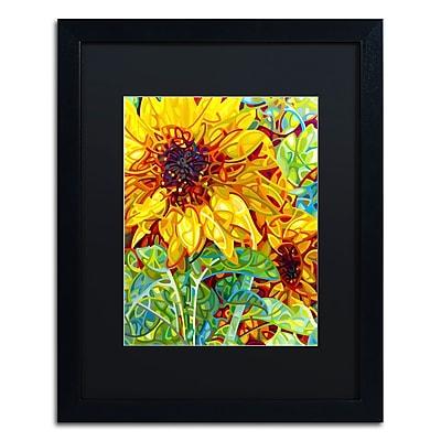 Trademark Fine Art Mandy Budan 'Summer In The Garden' 16 x 20 (886511754829)