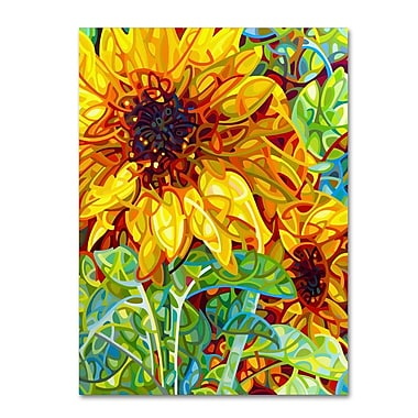 Trademark Fine Art Mandy Budan 'Summer In The Garden' 35 x 47 (ALI0934-C3547GG)