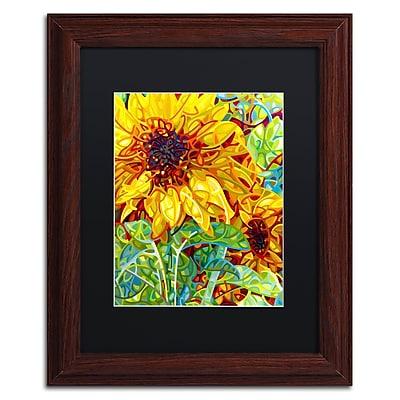 Trademark Fine Art Mandy Budan 'Summer In The Garden' 11 x 14 (886511754881)