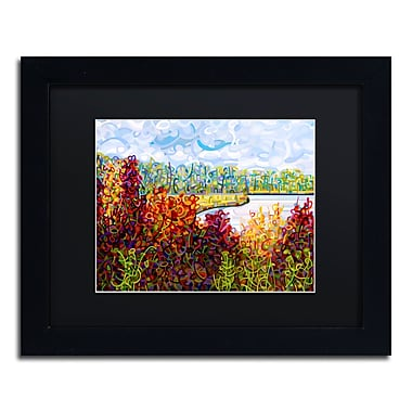 Trademark Fine Art Mandy Budan 'Summers End' 11 x 14 (886511754904)