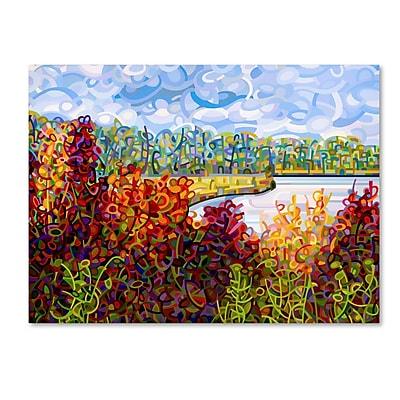 Trademark Fine Art Mandy Budan 'Summers End' 14 x 19 (ALI0935-C1419GG)