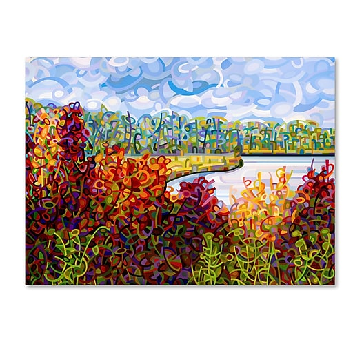 Trademark Fine Art Mandy Budan 'Summers End'  24 x 32 (ALI0935-C2432GG)