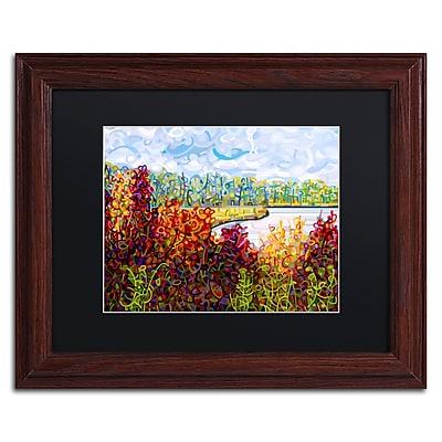 Trademark Fine Art Mandy Budan 'Summers End' 11 x 14 (886511754980)