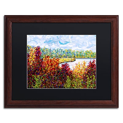 Trademark Fine Art Mandy Budan 'Summers End' 16 x 20 (886511754997)