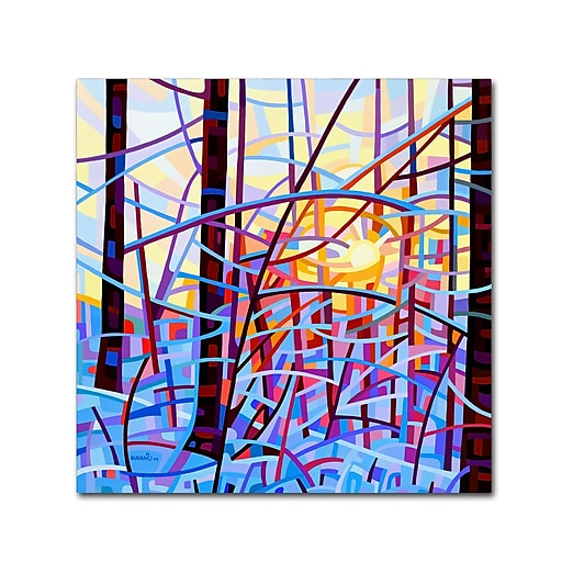 Trademark Fine Art Mandy Budan 'Sunrise'  18 x 18 (ALI0936-C1818GG)