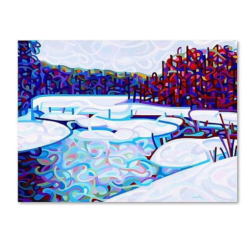 Trademark Fine Art Mandy Budan 'Thaw'  18 x 24 (ALI0937-C1824GG)