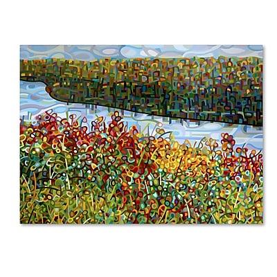 Trademark Fine Art Mandy Budan 'The River' 18 x 24 (ALI0939-C1824GG)