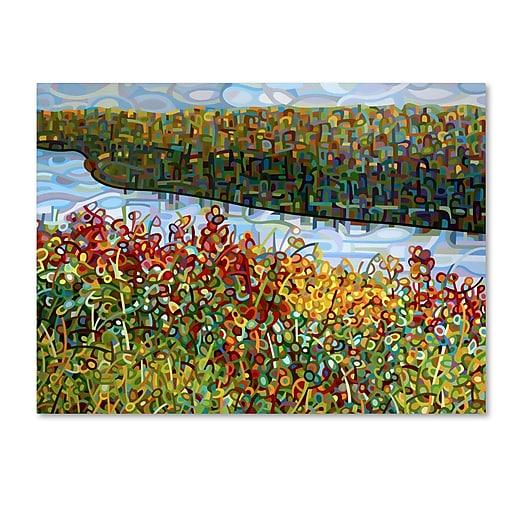 Trademark Fine Art Mandy Budan 'The River'  35 x 47 (ALI0939-C3547GG)