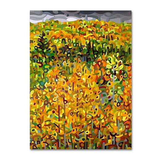 Trademark Fine Art Mandy Budan 'Towards Autumn'  18 x 24 (ALI0940-C1824GG)