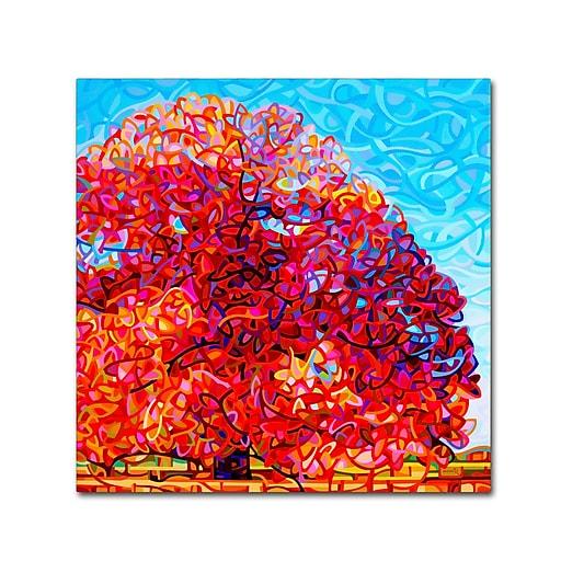 Trademark Fine Art Mandy Budan 'Buddha Tree'  35 x 35 (ALI0943-C3535GG)