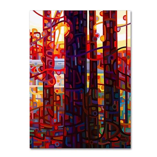 Trademark Fine Art Mandy Budan 'Carnelian Morning'  14 x 19 (ALI0944-C1419GG)