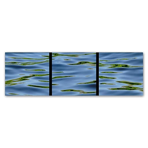 Trademark Fine Art Gregory O'Hanlon 'Water-Triptych'  16 x 47 (GO0044-C1647GG)