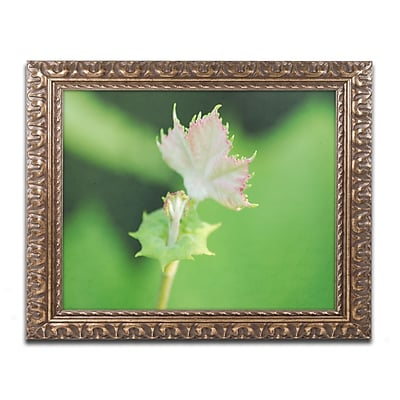 Trademark Global Monica Mize 'Beginning' Ornate Framed Art, 16