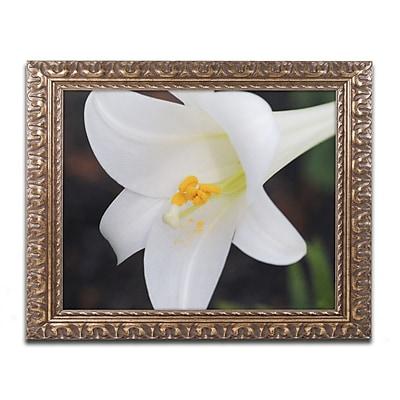 Trademark Global Monica Mize 'Easter' Ornate Framed Art, 16