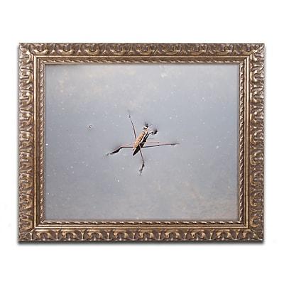 Trademark Fine Art Monica Mize 'Glide' 11 x 14 (MF146-G1114F)