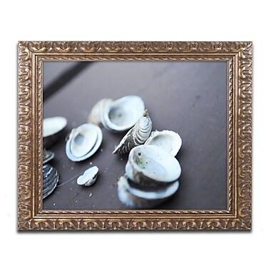 Trademark Global Monica Mize 'Lei' Ornate Framed Art, 16