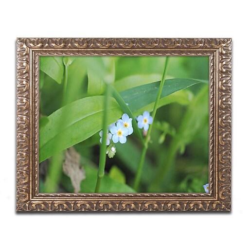 "Trademark Global Monica Mize 'Limited Perfection' Ornate Framed Art, 16"" x 20"" (MF154-G1620F)"