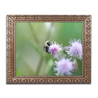 Trademark Global Monica Mize 'Meant to Be' Ornate Framed Art, 16