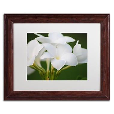 Trademark Fine Art Monica Mize 'Picture Perfect' 11 x 14 (MF164-W1114MF)