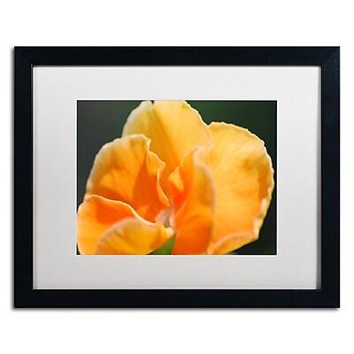 Trademark Fine Art Monica Mize 'Simple Compassion' 16 x 20 (MF167-B1620MF)
